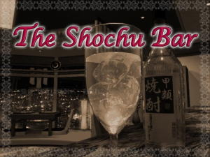 The_shochu_bar_1
